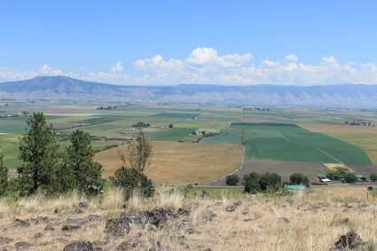 A colorful photo. It's taken from atop a hill with yellow grass and rocks. Below the hill is the vast Grande Ronde valley, with different colored rectangles of agriculture. In the distance, the blue mountains, and above, blue sky plus clouds.