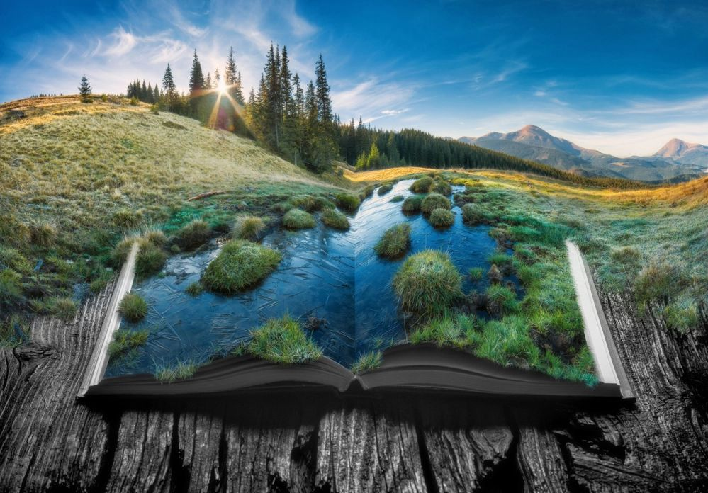 The colorful image is a fantasy/surreal computer-generated drawing of a beautiful landscape. Part of the grass and hillside is a book, open to the middle. Upon the watery pages grow bushes.