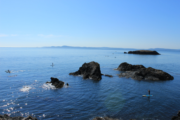 The idyllic color photo shows mostly ocean water below cloudless blue sky, but there are several rocks jutting up from the water. In the distance are hills. Part of the water is sparkling from sun; it looks magical. There are also a few standing kayakers paddling their way through the water.
